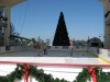 the-wharf-orange-beach-al-ice-rink-2